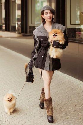 Chó phốc sóc mặt gấu hàng tuyển chọn được chị Ngọc Trinh mua