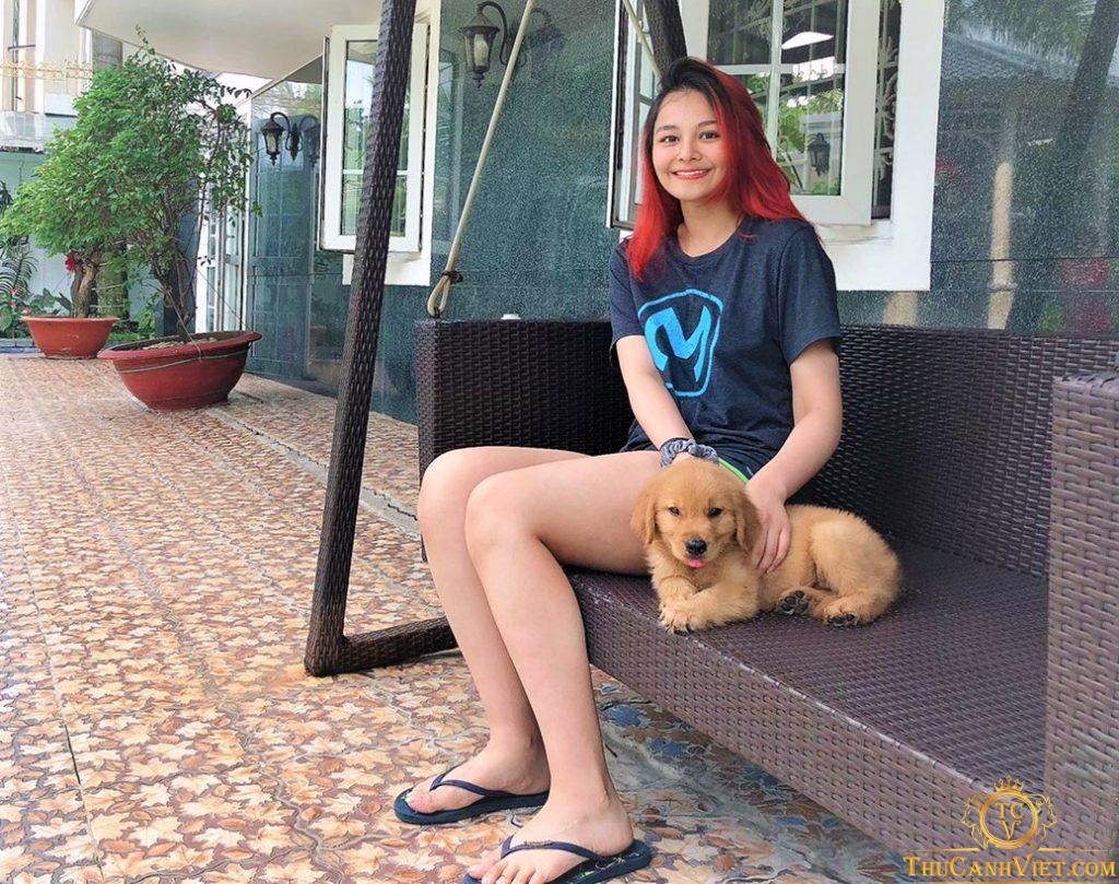 Chó golden điển trai sánh vai cùng con gái hoa hậu diệu hoa