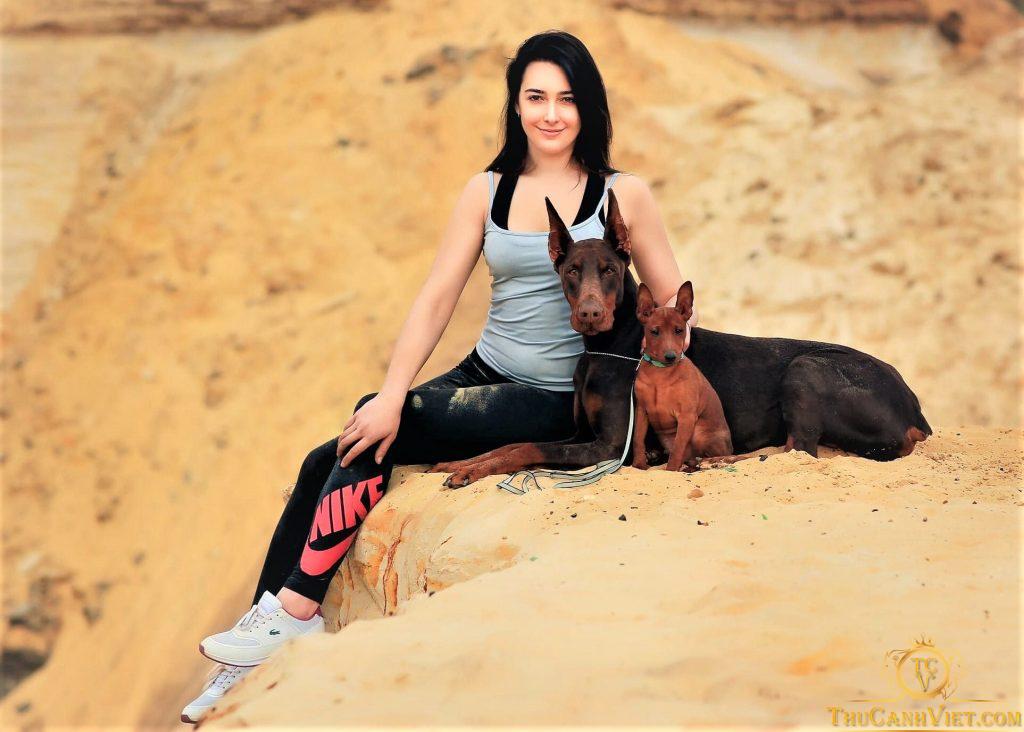 Sắc đẹp rạng ngời cửa Doberman và chú chó minpin khi cạnh cô chủ nhỏ