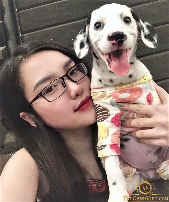 Chó Đốm Dalmatian va cô chủ nhỏ